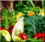 Healthy Diet Leads to Lower Cancer Risk