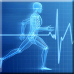 Exercise Lowers Risk of Many Diseases