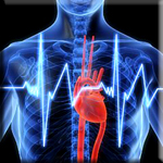 Heart Disease is Preventable Through Diet and Targeted Supplementation