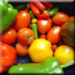 Low Carb Veggie Diet Assists Weight Loss