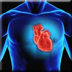 Resveratrol Lowers Can Help Prevent Heart Disease
