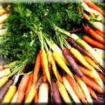 Alpha-Carotene is a Powerful Antioxidant, Commonly Found in Carrots