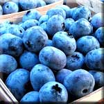 Berries are Packed with Anthocyanins That Boost the Immune Response