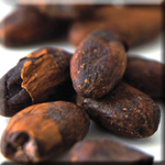 Cocoa From Dark Chocolate Cuts Carbohydrate Brreakdown to Help Weight Maintenance