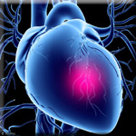 Vitamin E Tocotrienols Improve Blood Lipids to Lower Heart Attack Risk