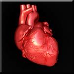 Vitamin E Tocotrienols Influence Gene Expression to Prevent Heart Disease