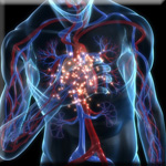 Vitamin D Dramatically Lowers Heart Disease Risk